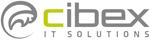 cibex IT SOLUTIONS