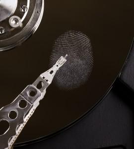 Fingerprint © Matthias Buehner
